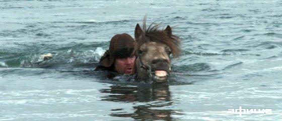 О лошадях и людях смотреть фото