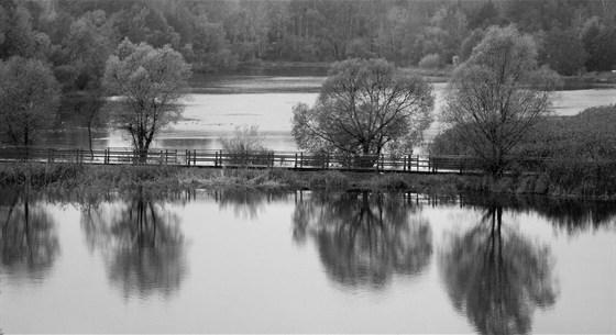 Фото парк Серебряный Бор