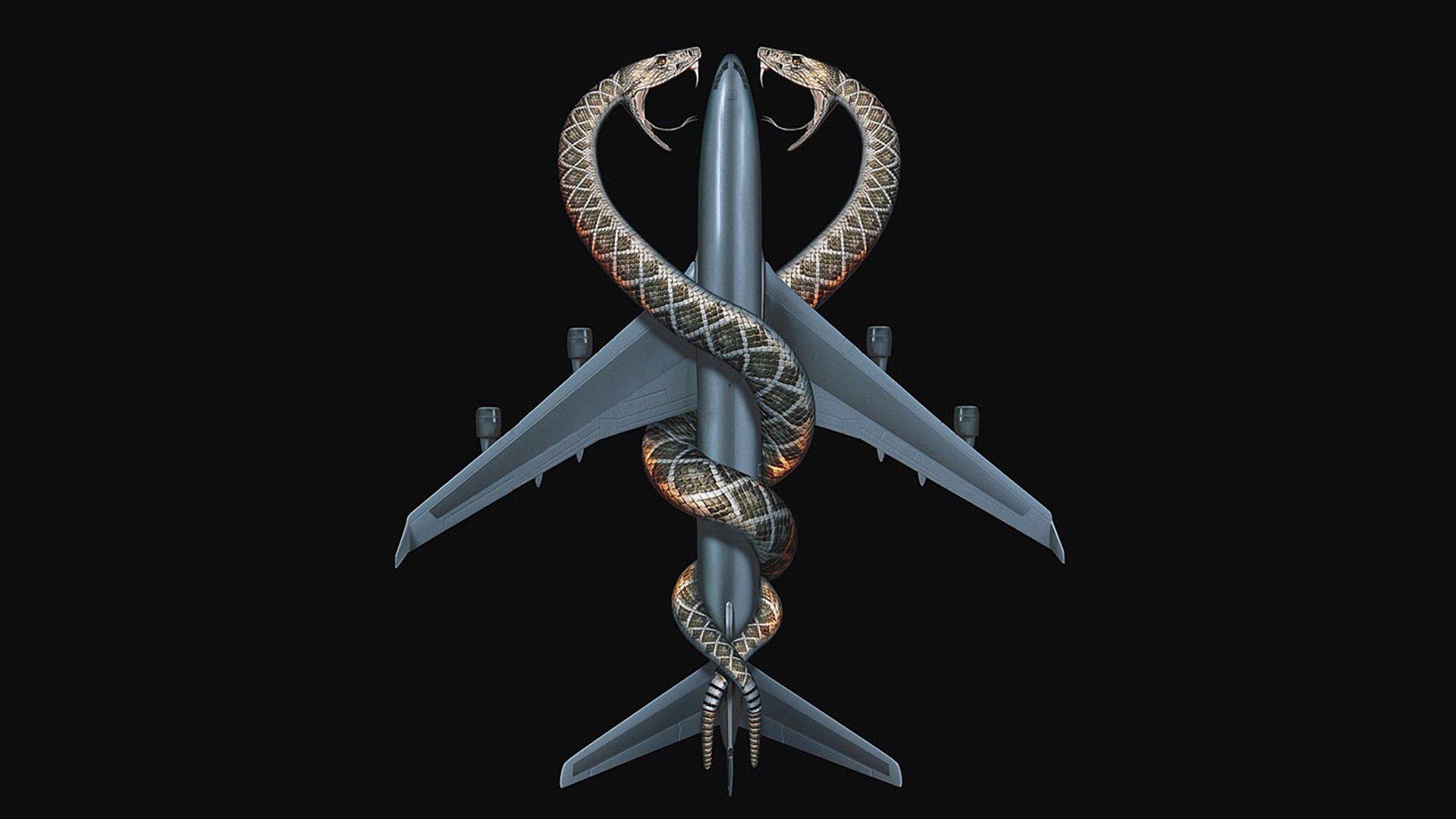Змеиный полет смотреть фото