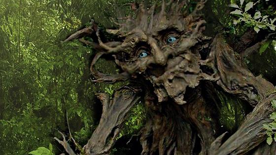 Сказка летнего леса