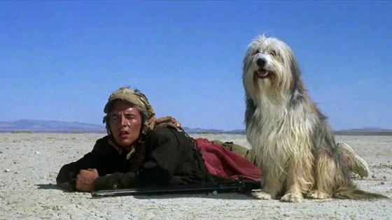 Парень и его пес (A Boy and His Dog)