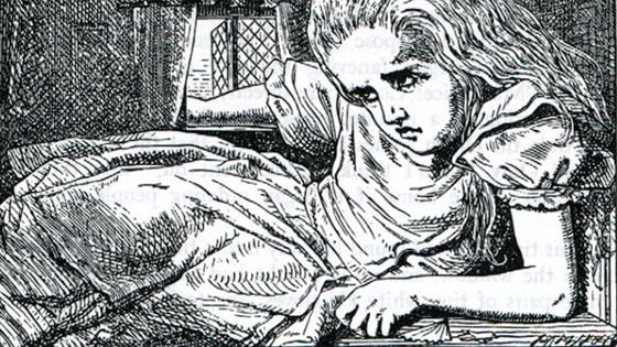 Алиса в Зазеркалье. Оригинальные гравюры Джона Тенниела