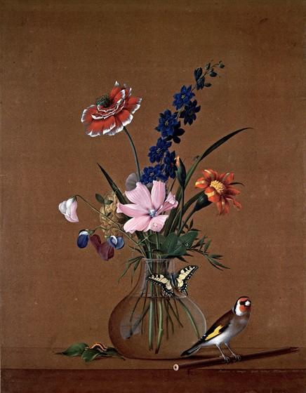 Цветы — остатки рая на Земле