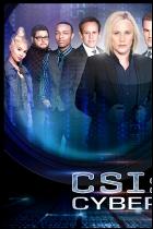 CSI: Киберпростр...