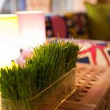 Ресторан Summer Veranda - фотография 4