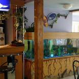 Ресторан Эксклюзив - фотография 2