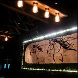 Ресторан Дикий - фотография 3 - Интерьер