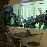 Ресторан Дайкири - фотография 4