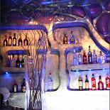 Ресторан Пришелец - фотография 1