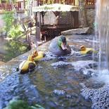 Ресторан Шафран - фотография 6