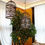 Ресторан Марио - фотография 6 - На фоне солнечно-желтых стен расцвели апельсиновые и мандариновые деревья в кадках, с потолков свисают кованые люстры, стены украшены итальянскими фресками с фруктовыми мотивами.