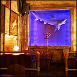 Ресторан Aloha - фотография 3
