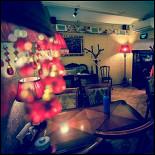 Ресторан Рецептор - фотография 6