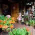 Ресторан Будвар - фотография 5