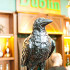 Ресторан Dublin - фотография 3