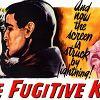 Из породы беглецов (The Fugitive Kind)