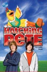 Постер Пит в перьях