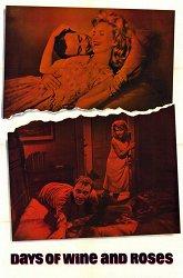 Постер Дни вина и роз