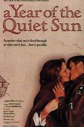 Постер Год спокойного солнца