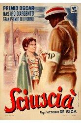 Постер Шуша