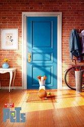 Постер Тайная жизнь домашних животных