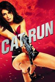 Всем нужна Кэт / Cat Run