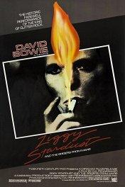 Зигги Звездная Пыль и пауки с Марса / Ziggy Stardust and the Spiders from Mars