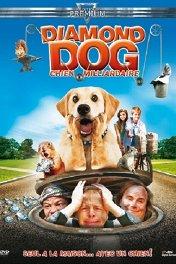 Драгоценный пес / Dog Gone