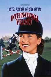 Международный приз «Вельвет» / International Velvet