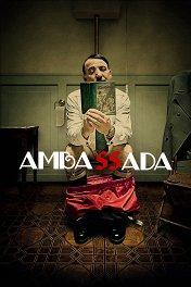 Дипмиссия / Ambassada