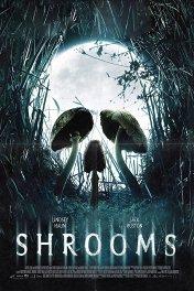Грибы / Shrooms