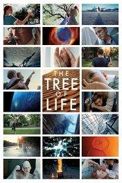 Древо жизни / The Tree of Life