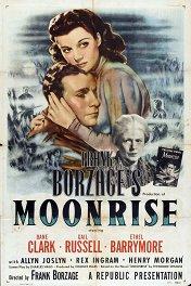 Восход луны / Moonrise