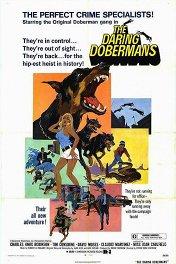 Отважные доберманы / The Daring Dobermans