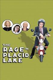 Неисправимый оптимист / The Rage in Placid Lake