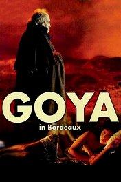 Гойя в Бордо / Goya en Burdeos