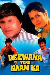 Ослепленные любовью / Deewana Tere Naam Ka