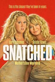 Дочь и мать ее / Snatched