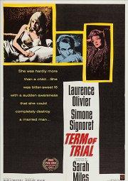 Постер Судебный процесс