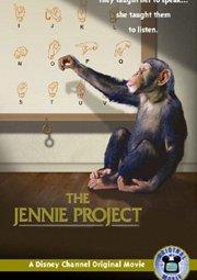 Постер Проект «Дженни»