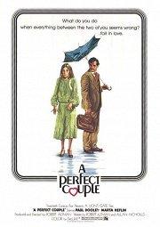 Постер Идеальная пара