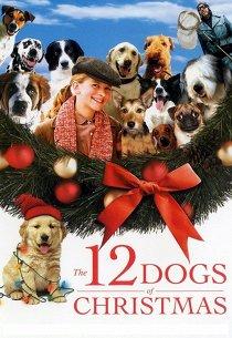 12 рождественских псов