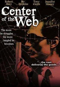 В сетях паутины