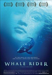 Верхом на ките