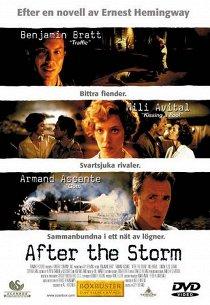 После бури