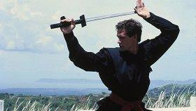 10 бойких, яростных и веселых фильмов про ниндзя