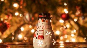 Как снеговики к Деду Морозу ходили
