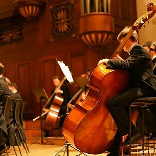 Солисты филармонии (скрипка, виолончель, фортепиано)