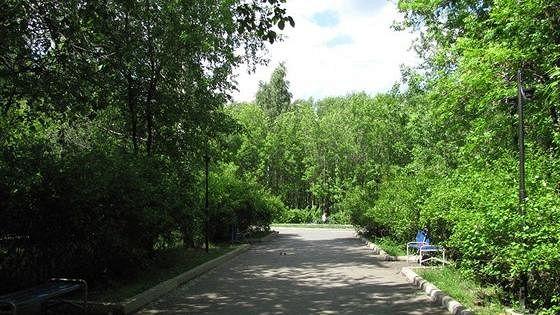 Основинский парк в районе Пионерского поселка