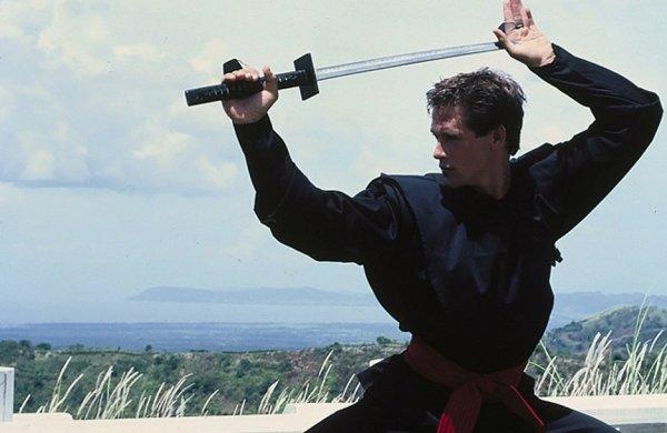 бойких, яростных и веселых фильмов про ниндзя